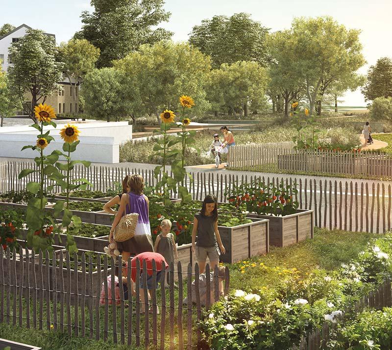 Les jardins partagés de Parc du Lac