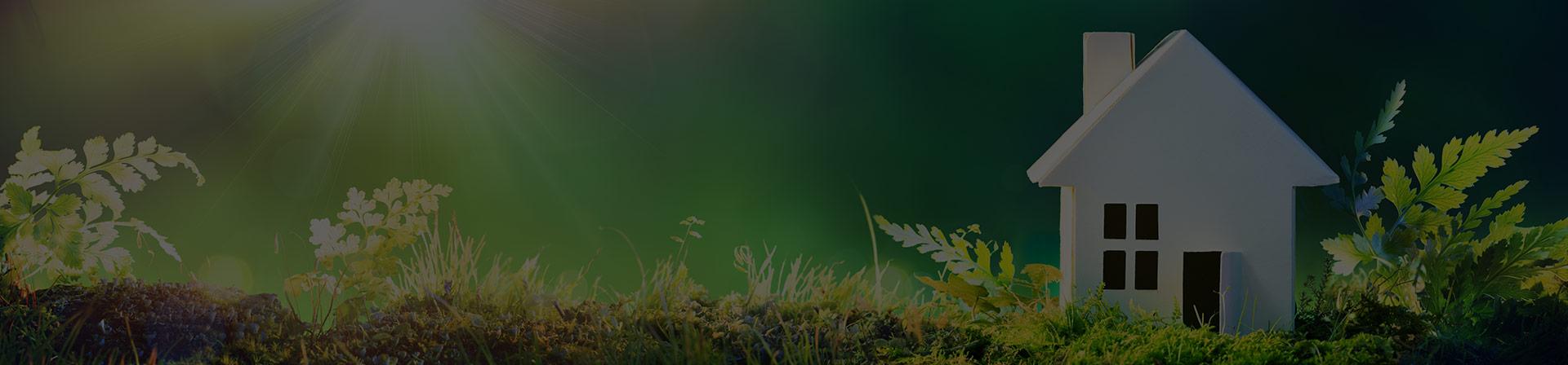 La préservation de l'environnement à Parc du Lac